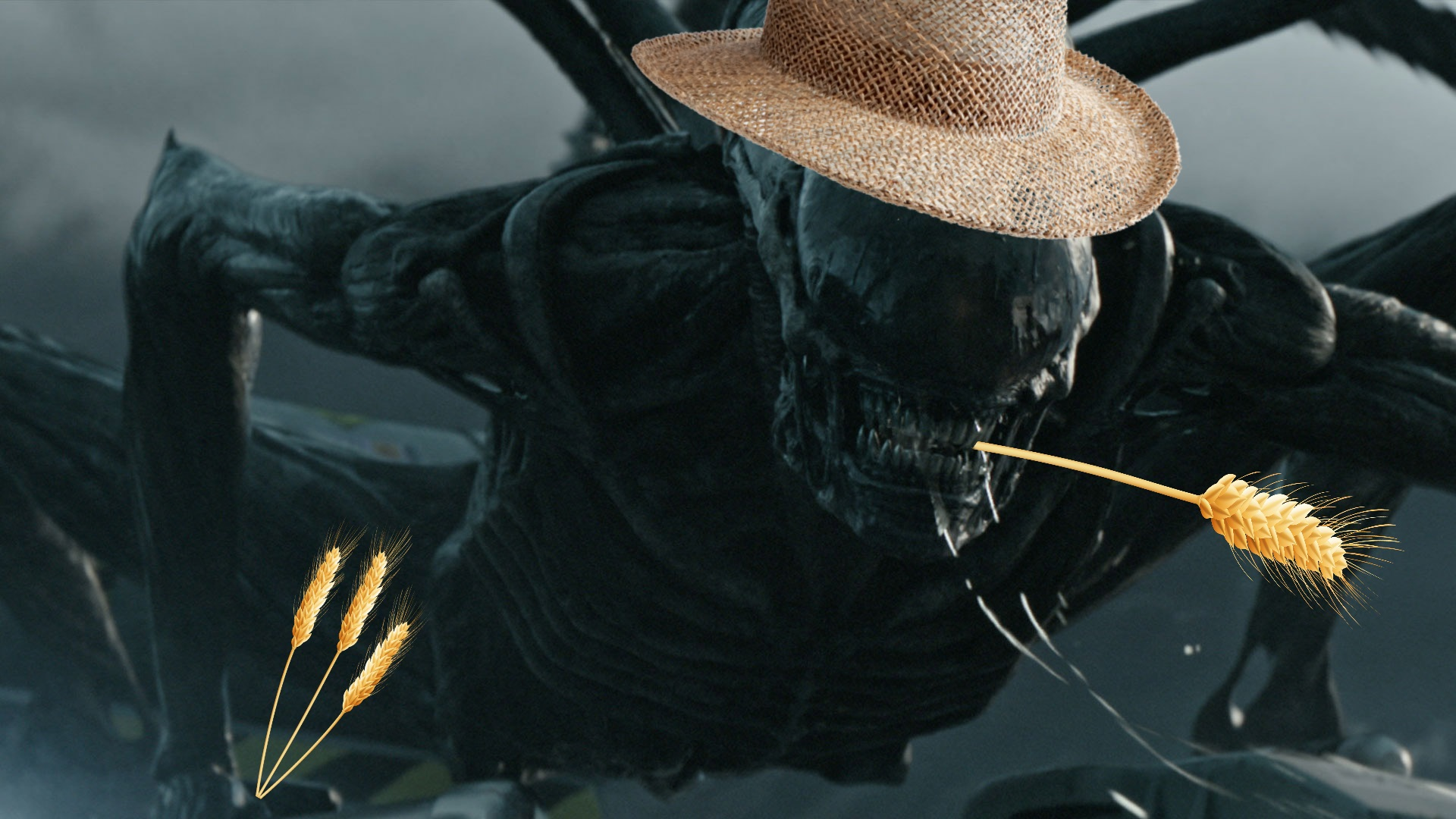 thetruepandagod entertainment scott prometheus about much more covenant sequels planning ridley instead least didnt probably want give away prequel-sequels three unaccounted weve ruined dumb acting crew scientist complained 2017 honestly people theyve alien just should however worse yeah this series