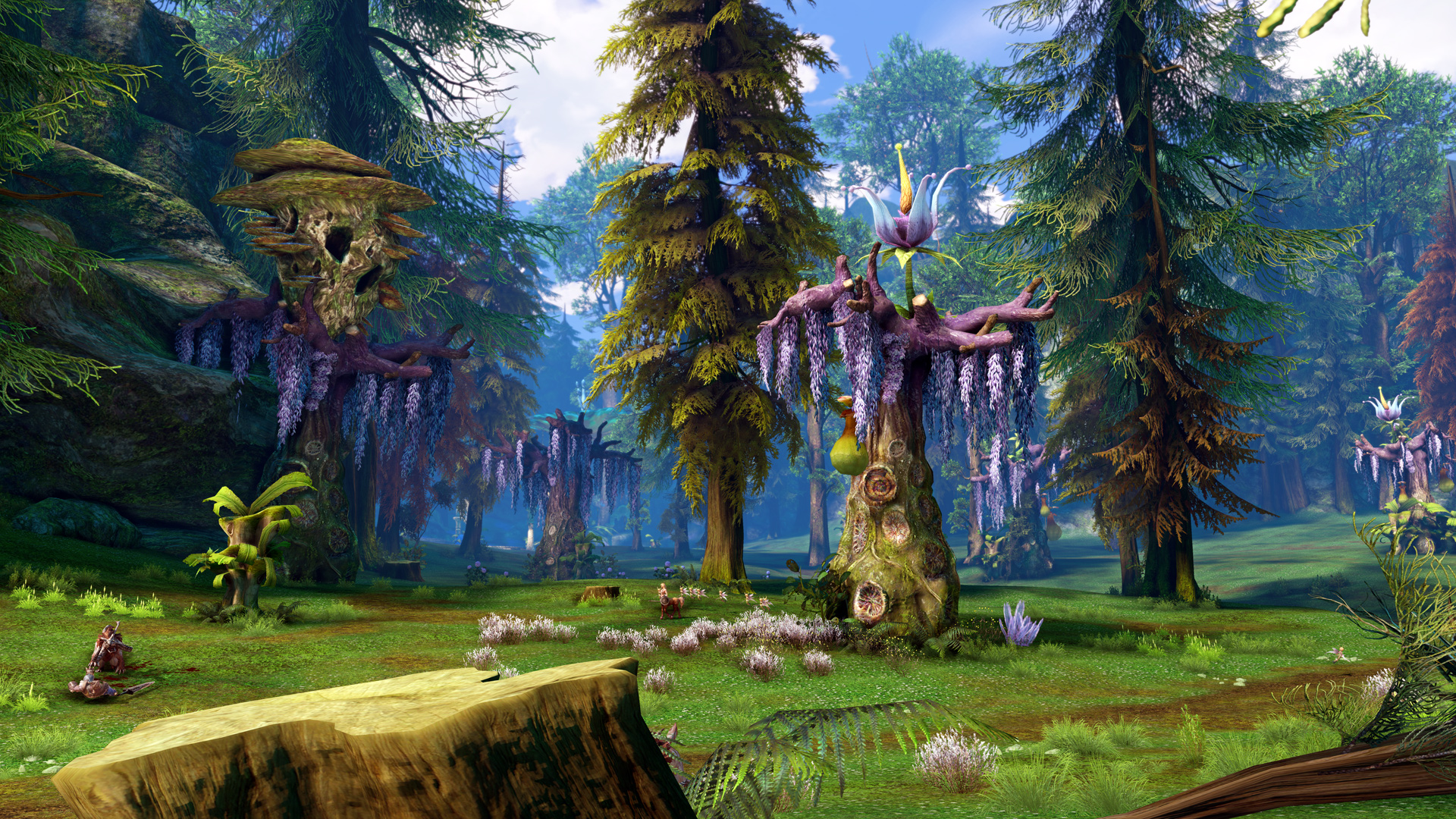 sonomaa games this tera wallpaper long time going awhile desktop contest seem find cant thread other from that entries journal