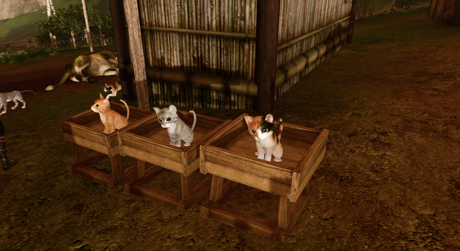 ArcheAge Leveling Guide - Basic Tips To Easy Leveling
