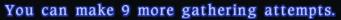 miokomioko  start deleted link right phase beta thread speculationquestion random that liking ffxiv