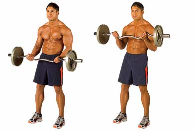 rkenshin general have this cardio what body really that after time more protein with fish doing thread minutes like pounds muscle just being from should questions less maybe bowflex would weight restrictive other shakes done dont think always clothes anorexic underneath fact week last cant people been fitness fanatics making input same