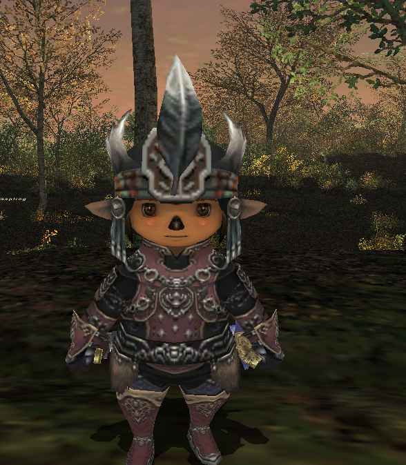 fondue ffxi pictures thread tarutaru cute return