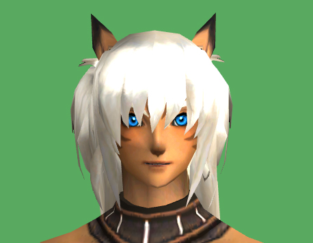 xiani ffxi have some mithra head issues because costumes dats those problem body with side pieces separate items happen mostly legs never hands feet since about sure client server moment fixing this tell happens that anybody race took clipping horrid pictures from viewer altana seem identify help anyone issue them full using