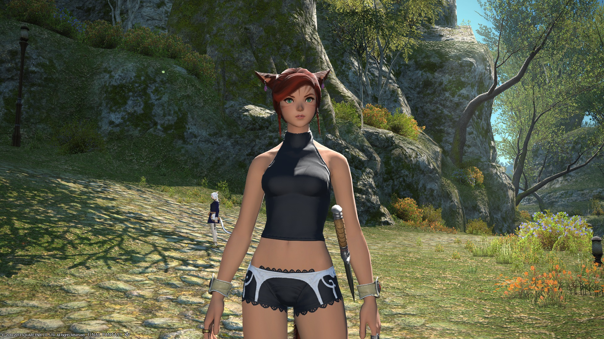 niwaar ffxiv cute fantastic awesome picture this comment cheesecake phase contest wanted just