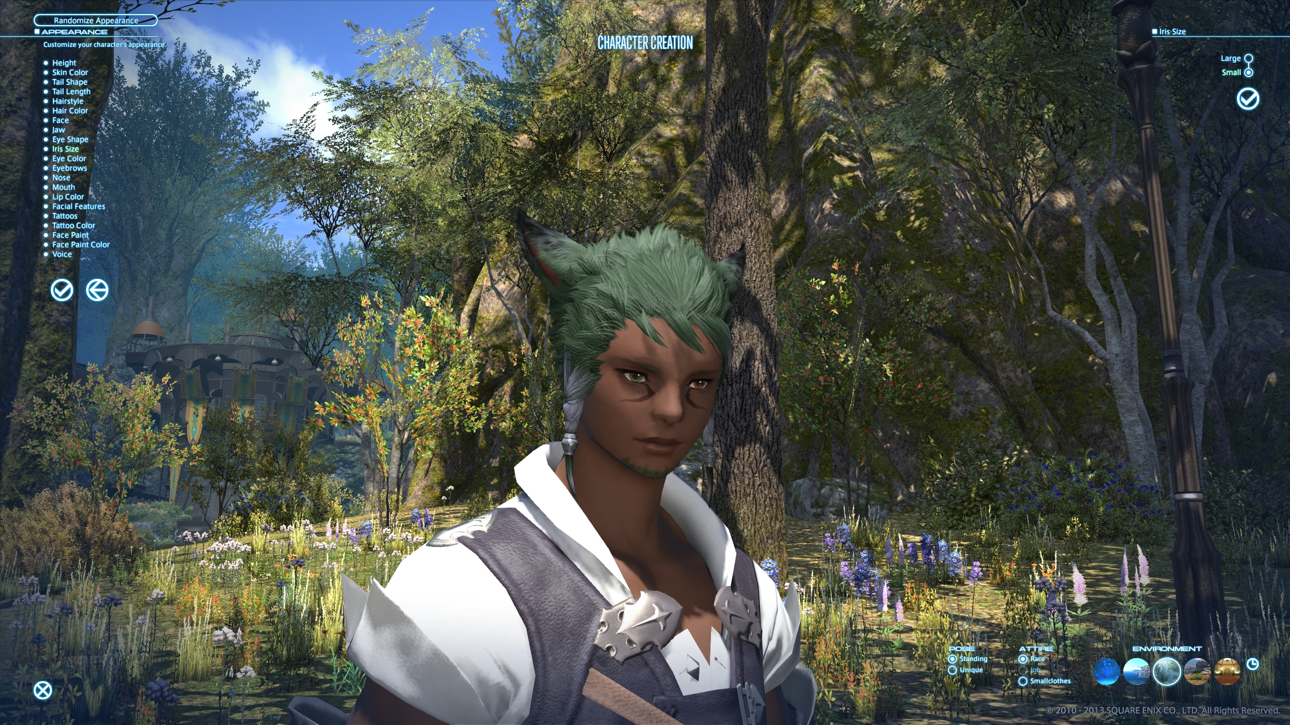 adajer ffxiv this hair ffxi character like color what green more help pinkish look akin cause laughing stop cannot eyesmouth expression website official best here found also actually match recreating grown accustomed quite personally pictures your benchmark going heres style just char post slightly darker edit2 pinkredish